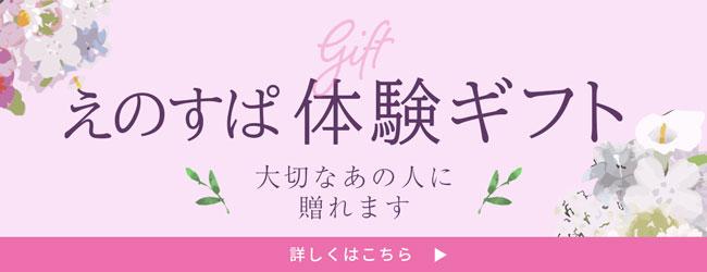 えのすぱ体験ギフト ソウ・エクスペリエンス